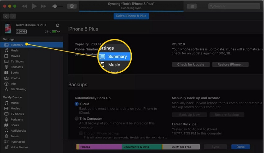 how to manually manage music on ipod